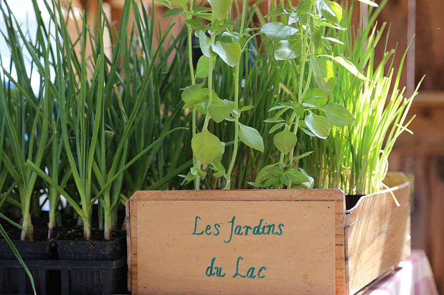 Marché locavore Les jardins du lac